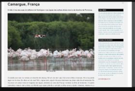 Camargue: la vie en rose